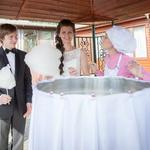 Сладкая вата на свадьбу и другие праздники)