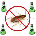 Помогу избавиться от тараканов в квартире