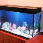 Обслуживание, чистка, изготовление аквариумов