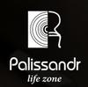 Архитектурно- строительное бюро Палисандр
