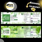 Дизайн баннеров для сайта от Black Lemon Design