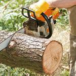Резка  дров и деревьев бензопилой