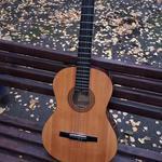 Купить гитару и передать в Киев (маршруткой)